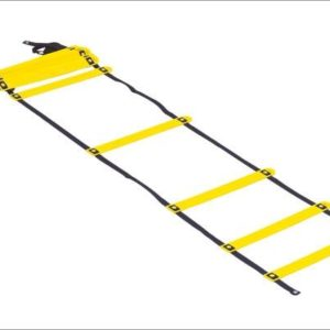 SMART Acceleration Ladder