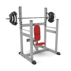 Shoulder Press Bench PB759