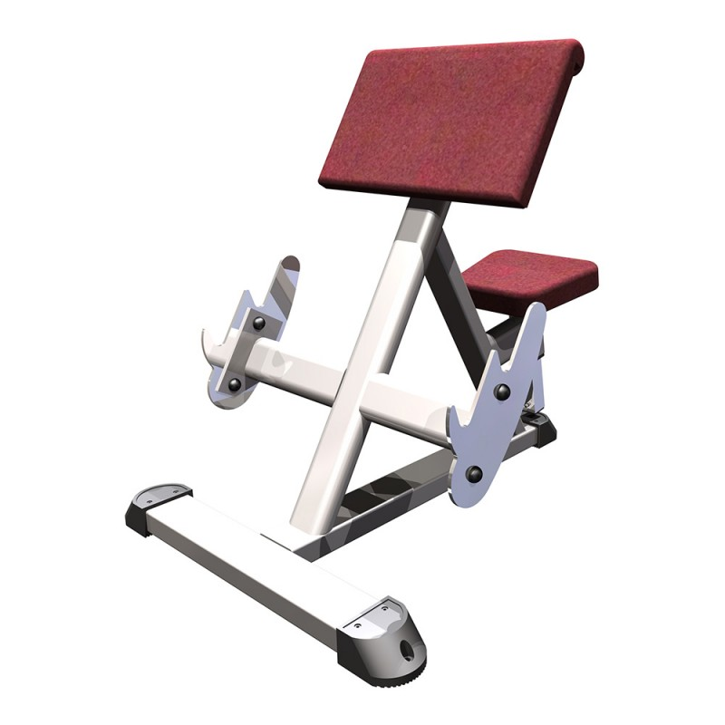 Preacher Curl Bench Perform Better