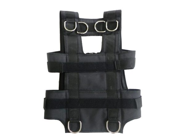 silver back harness